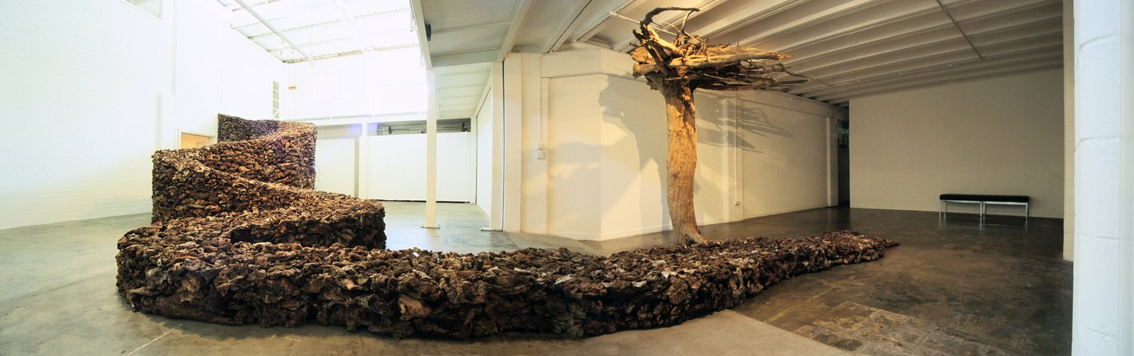 James Darling & Lesley Forwood,  Everyone Lives Downstream,  2004