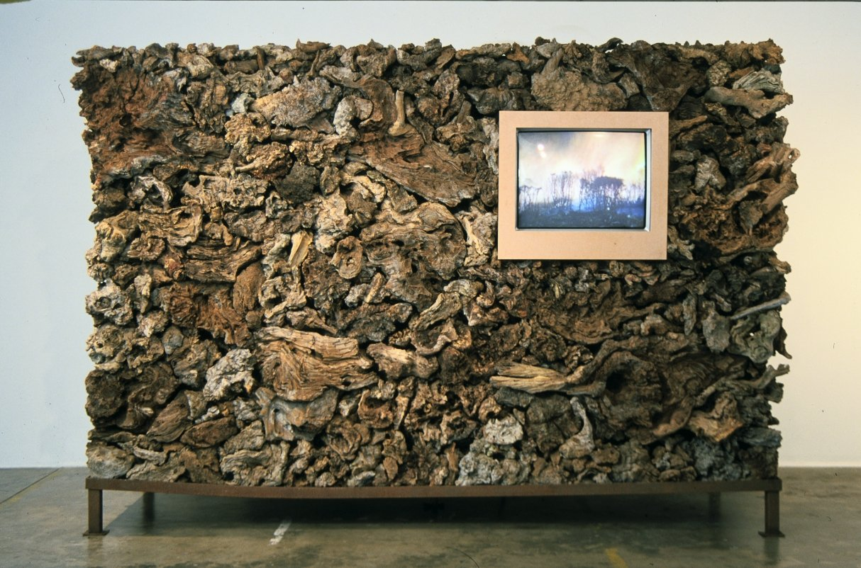 James Darling & Lesley Forwood,  Fire and Roots 2,  2001, at Greenaway Art Gallery / GAGPROJECTS