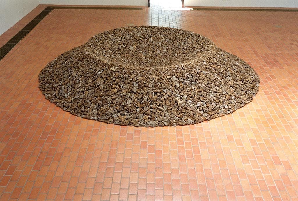 James Darling & Lesley Forwood,  Malleefowl nest 8: Autumn , 2001,  Empathy: Beyond the Horizon,  Taidemuseo, Pori, Finland