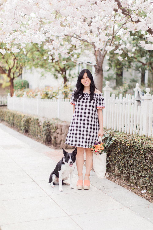 maternity+dress+-+honeysuckle (2).jpeg