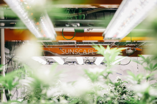 Sunscape LED silver panel