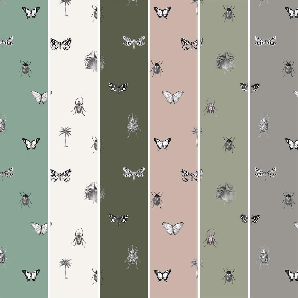 Exemples de couleurs de fonds déja réalisés