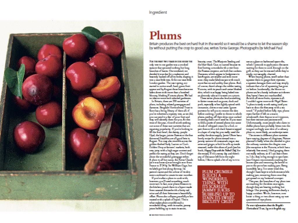 Ingredient: Plums, Waitrose Food Illustrated