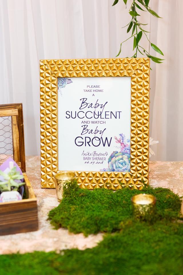 baby succulent.jpg