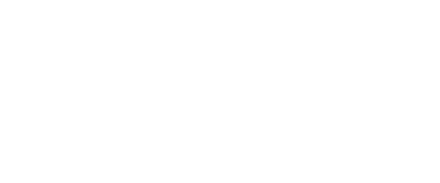 TouchdownVentures.png