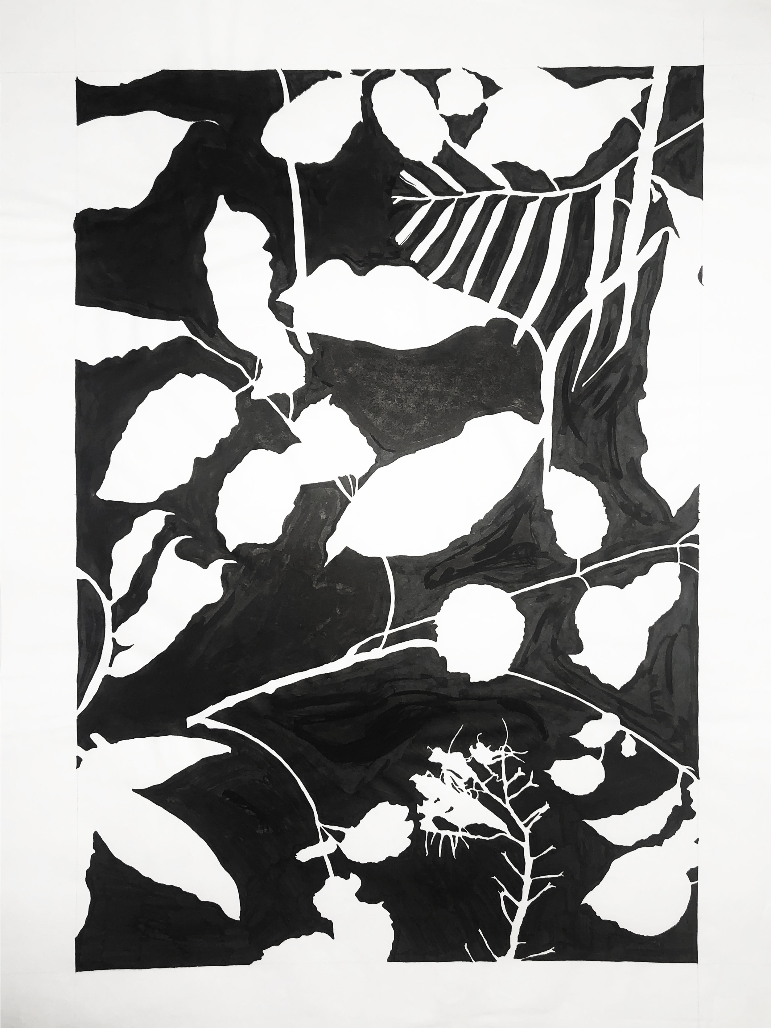A study of fabric - Sumi InkA study of composition, shape, and form.