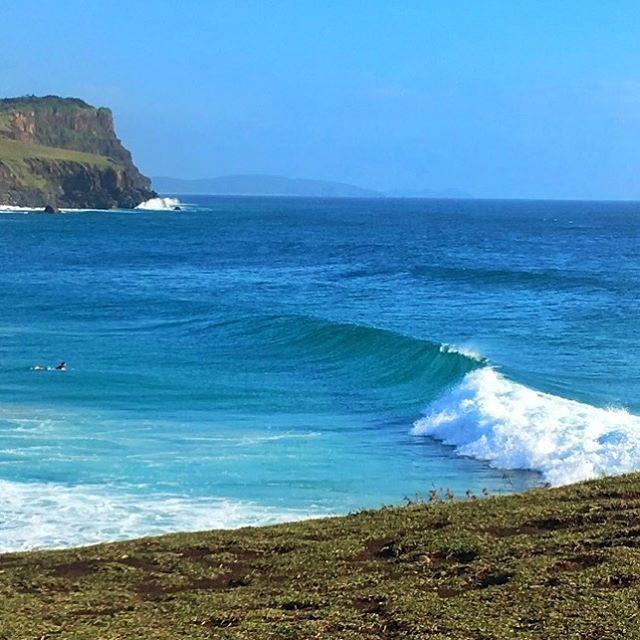 • #tbt Trip out to one of our favorite surf spots, Lennox Head, Australia 🤙🏼 As much as we 💚 coastal Southern California living, it's always great to travel the 🌎 ☀️ • • • • • 📸 @reveremediagroup • • #surfer #surf #worklifebalanced #realestatedeveloper #orangecounty #huntingtonbeach #huntingtonbeachpier #newportbeach #santamonica #hermosabeach