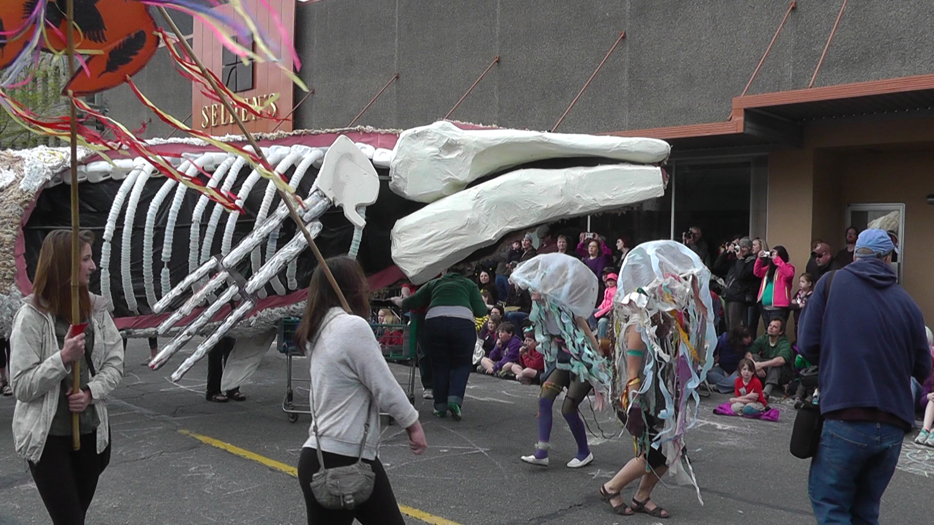 Whale Skeleton.jpg