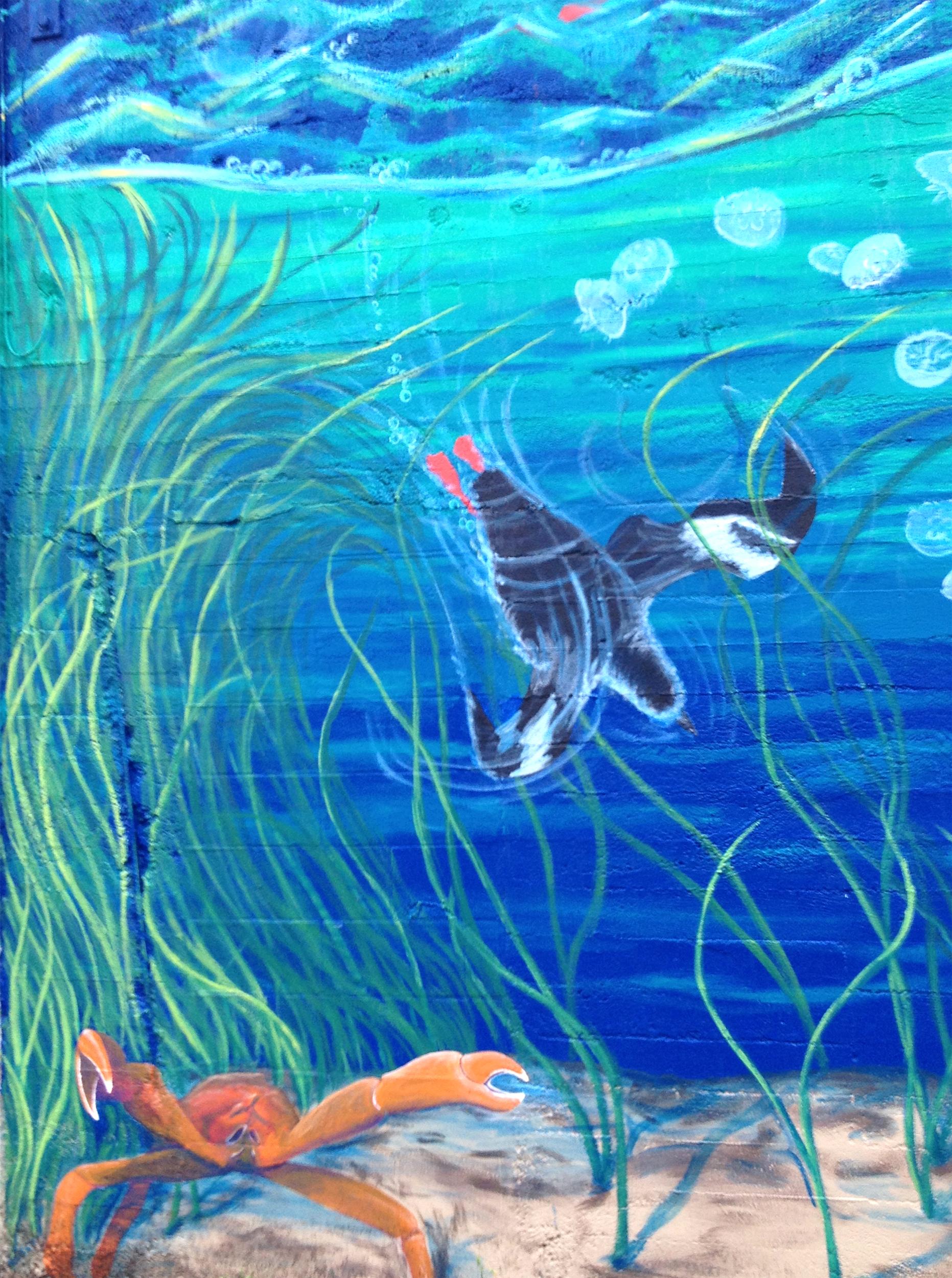 Estuarium Pigeon Guillemot.jpg