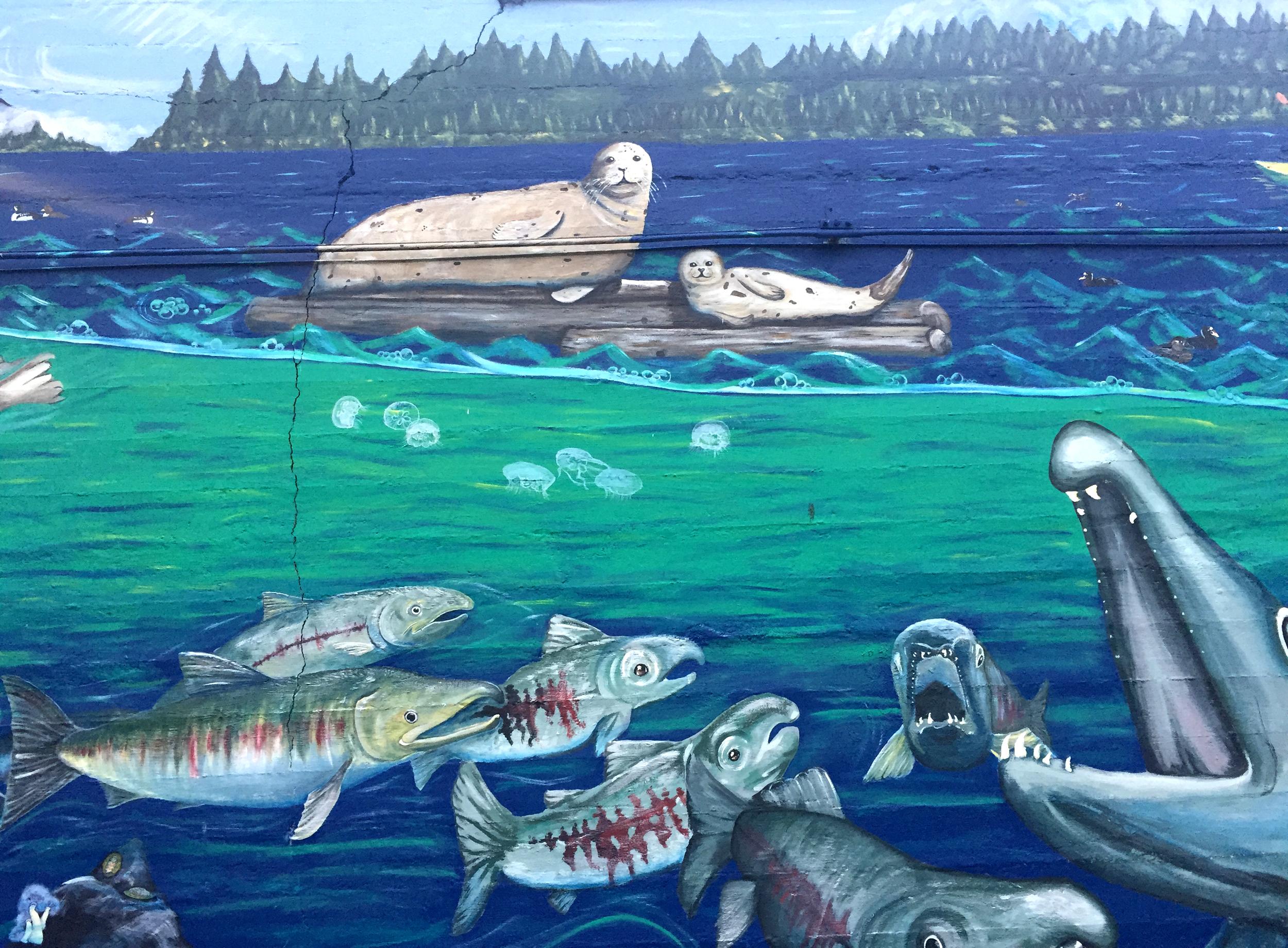 Estuarium Salmon.jpg