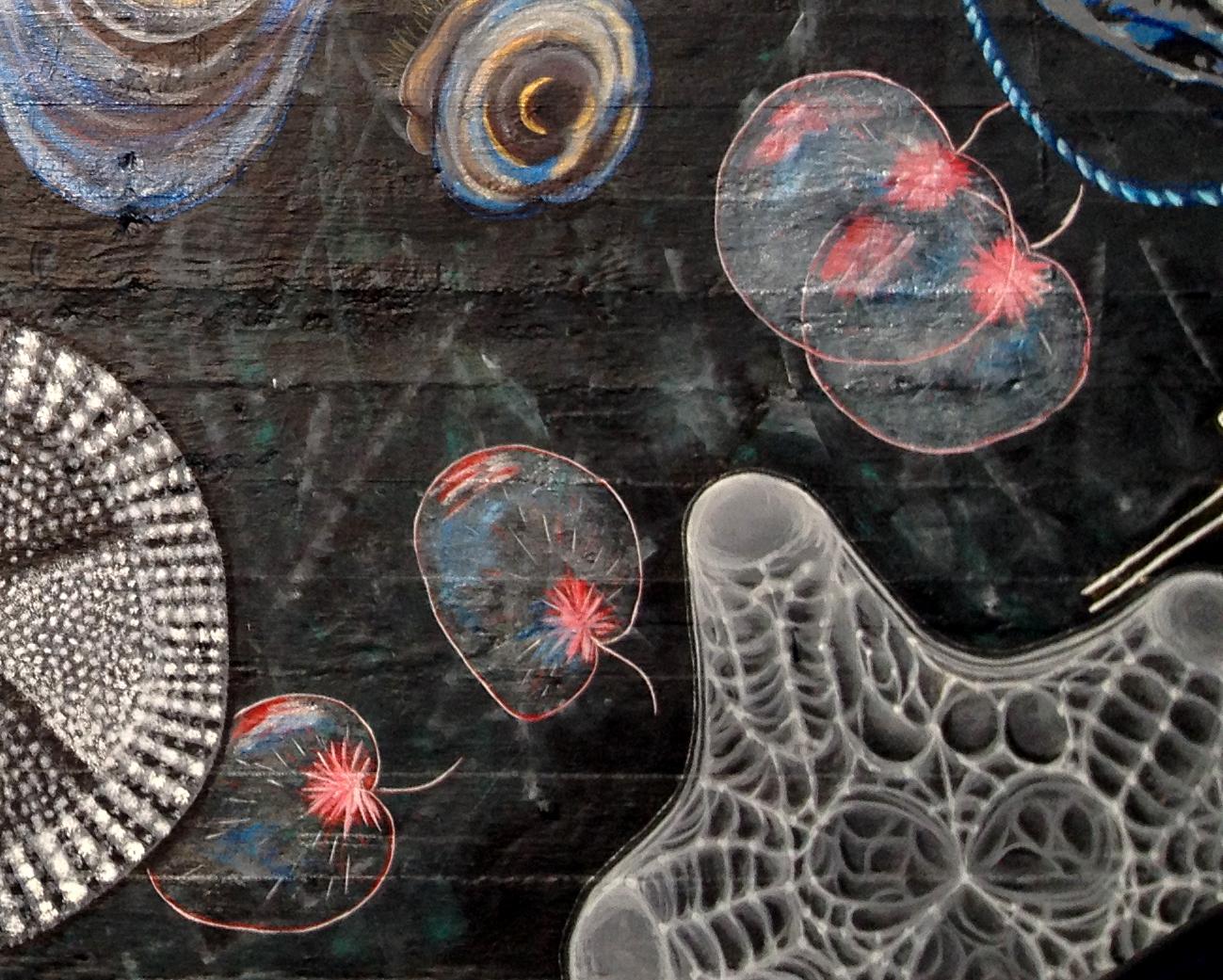 Plankton Noctaluca.jpg