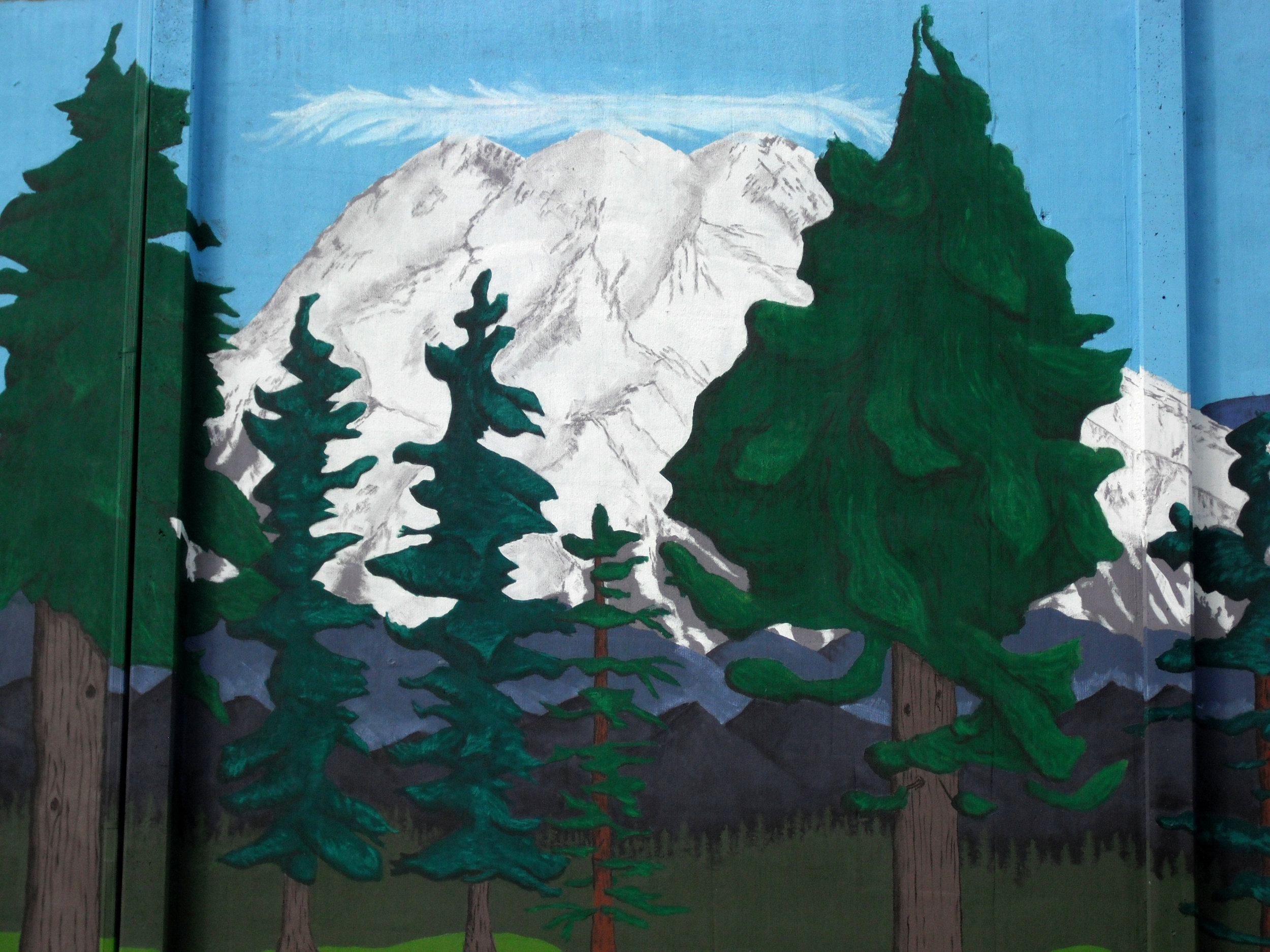 Woodland Detail 4.jpg