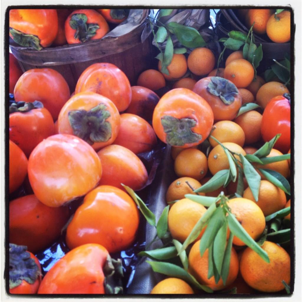 Harvest1PersimmonsBasket-1024x1024.jpg