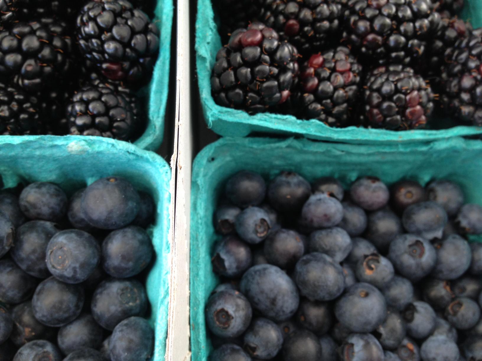Harvest2berries.jpg