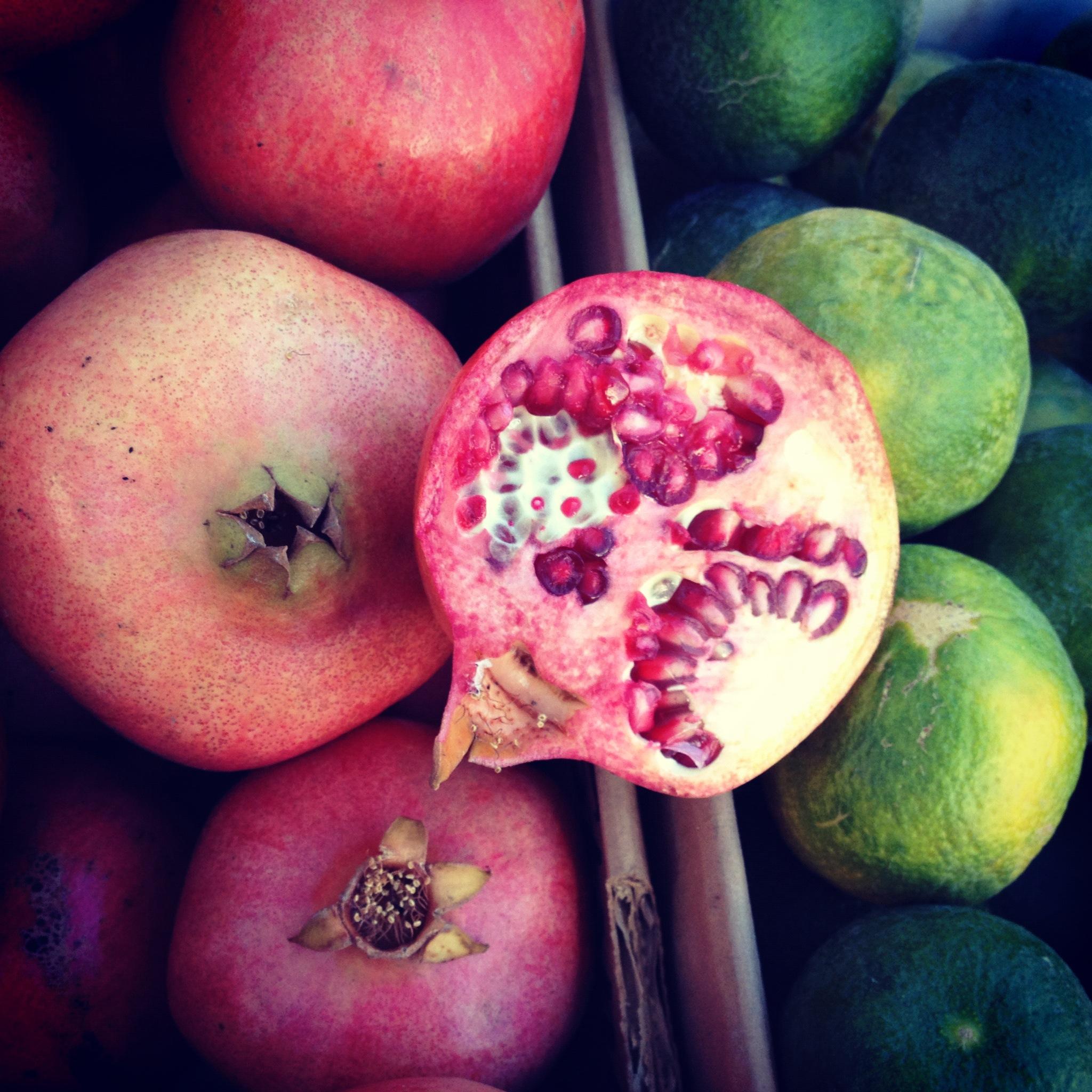 HarvestPomegranate.jpg