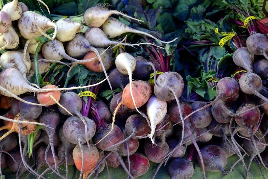 HarvestRainbowBeets-1024x682.jpg