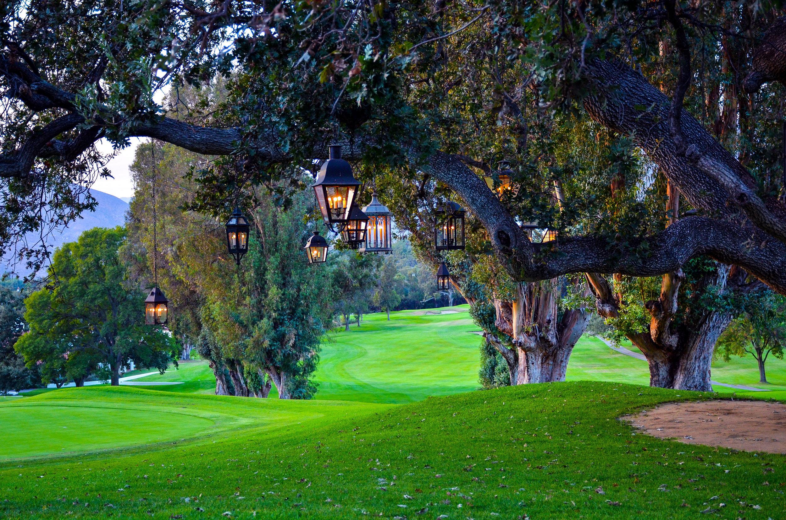 Ojai-Valley-Inn-Oak-Tree-2.jpg