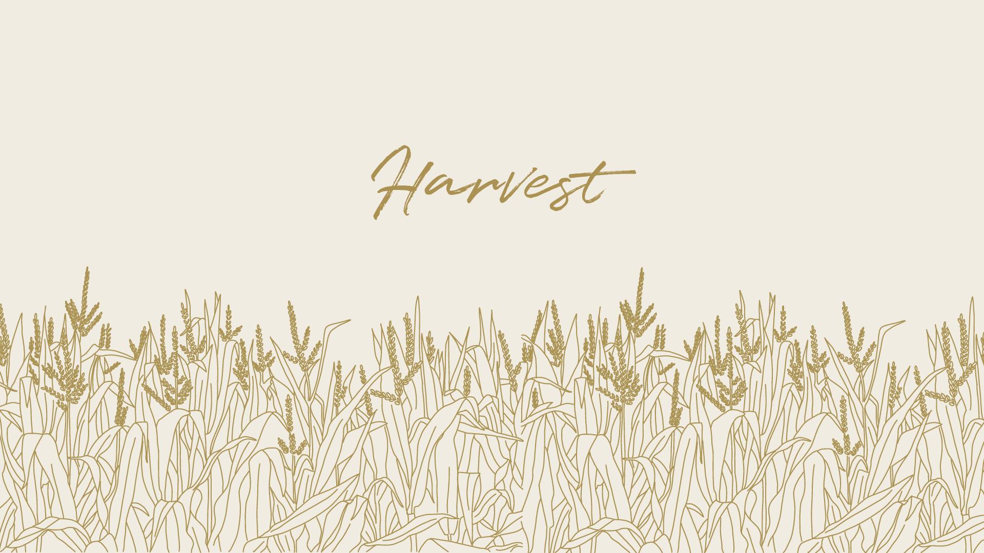 Harvest Series Title Slide .jpg