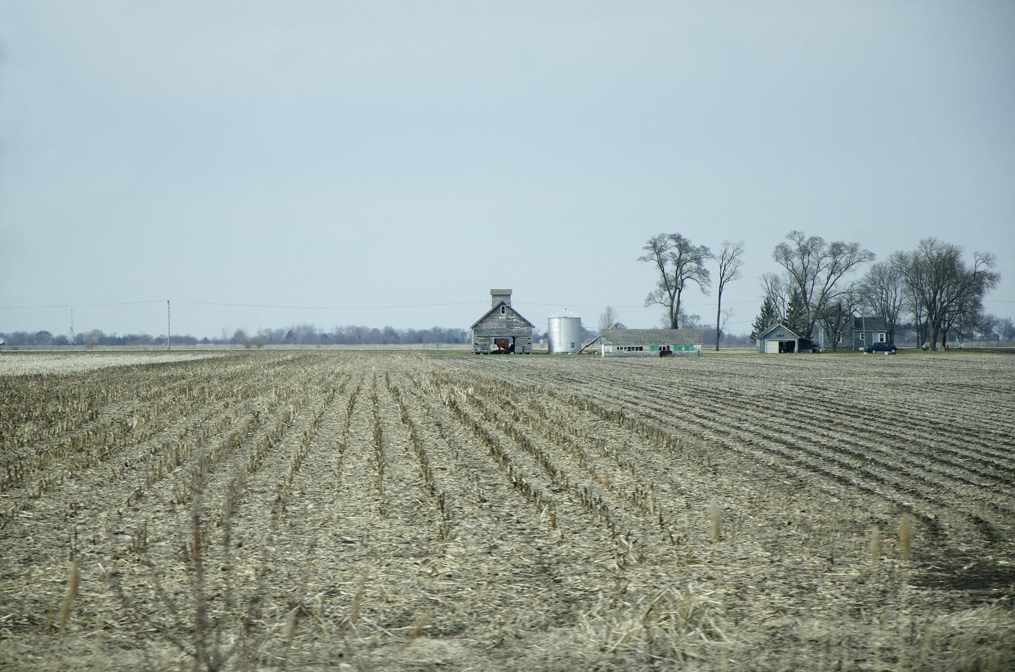 Farm Village, 2018