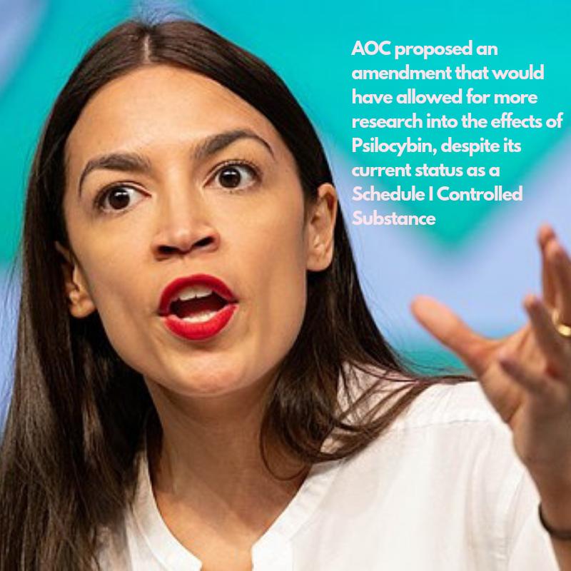 AOC, Congressional trailblazer