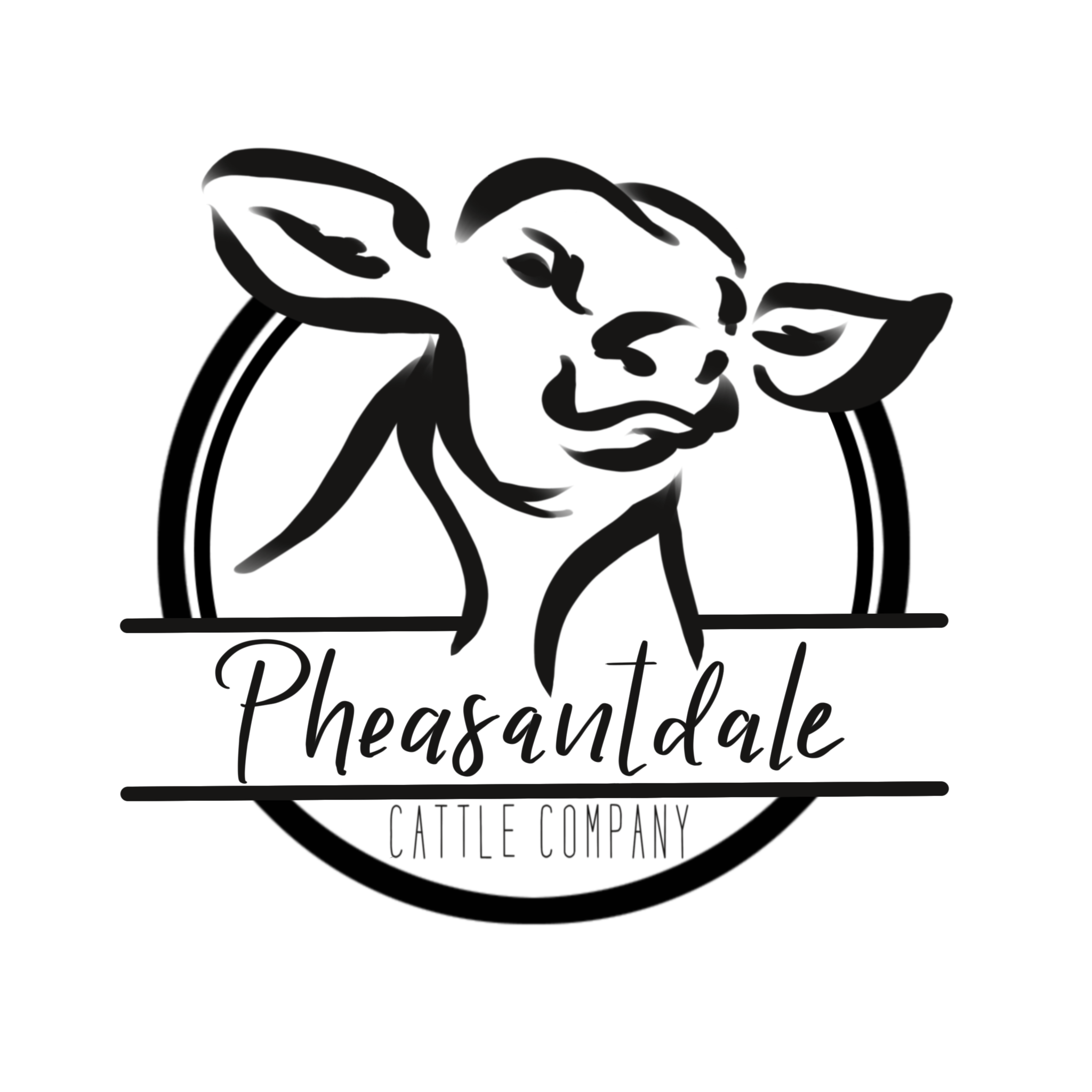 Pheasantdale Cattle Company