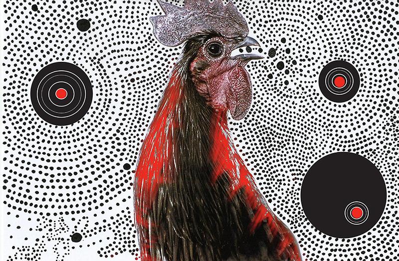 Techo birds7.jpg