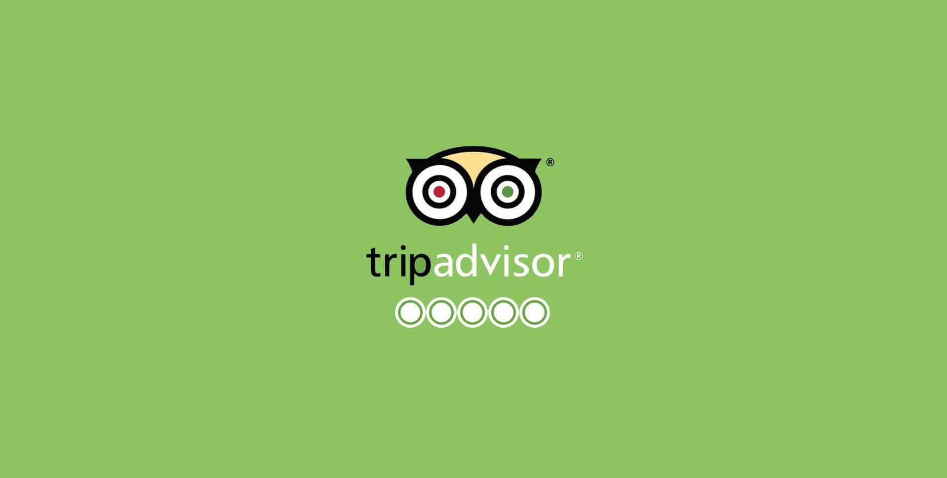 trip advisor -