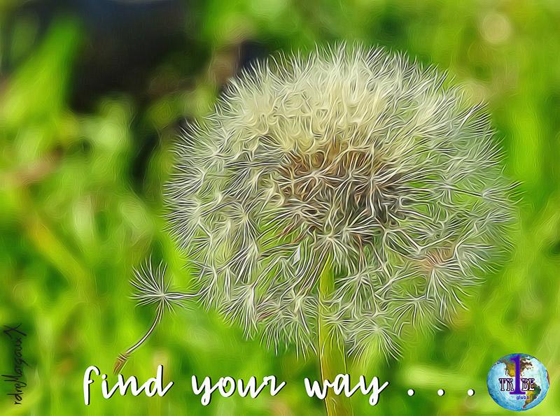 findyourway.jpg