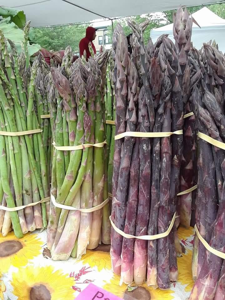 Asparagus (8).jpg