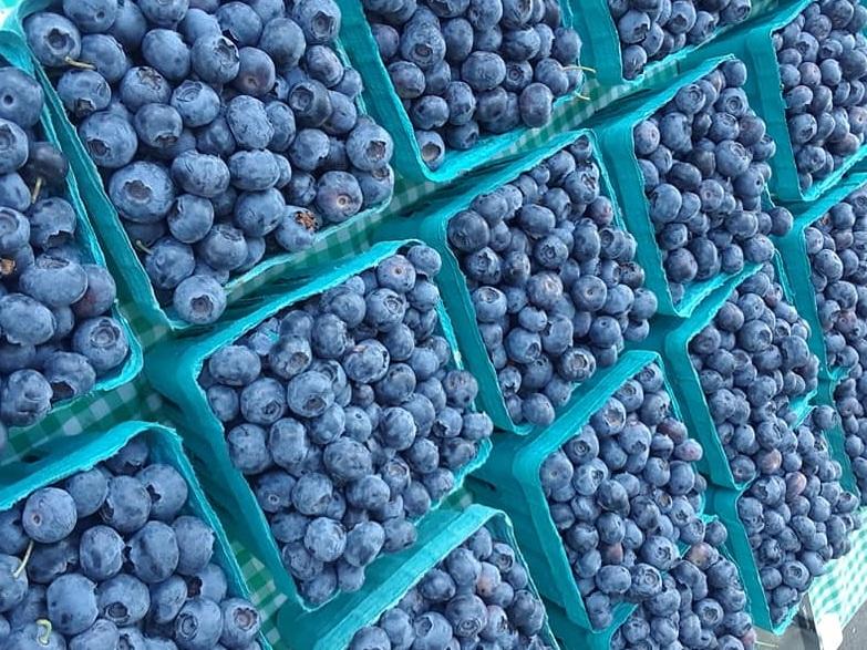 Blueberries+%283%29.jpg