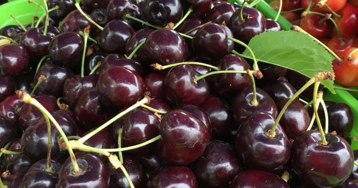 Cherries%2B%25285%2529.jpg