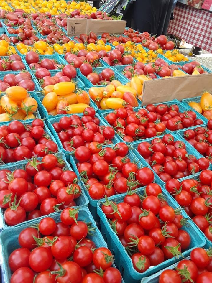 Tomatoes (35).jpg