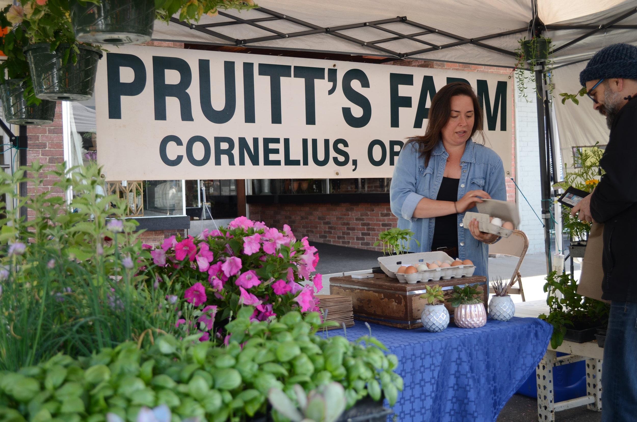 Pruitt's Farm (3).JPG