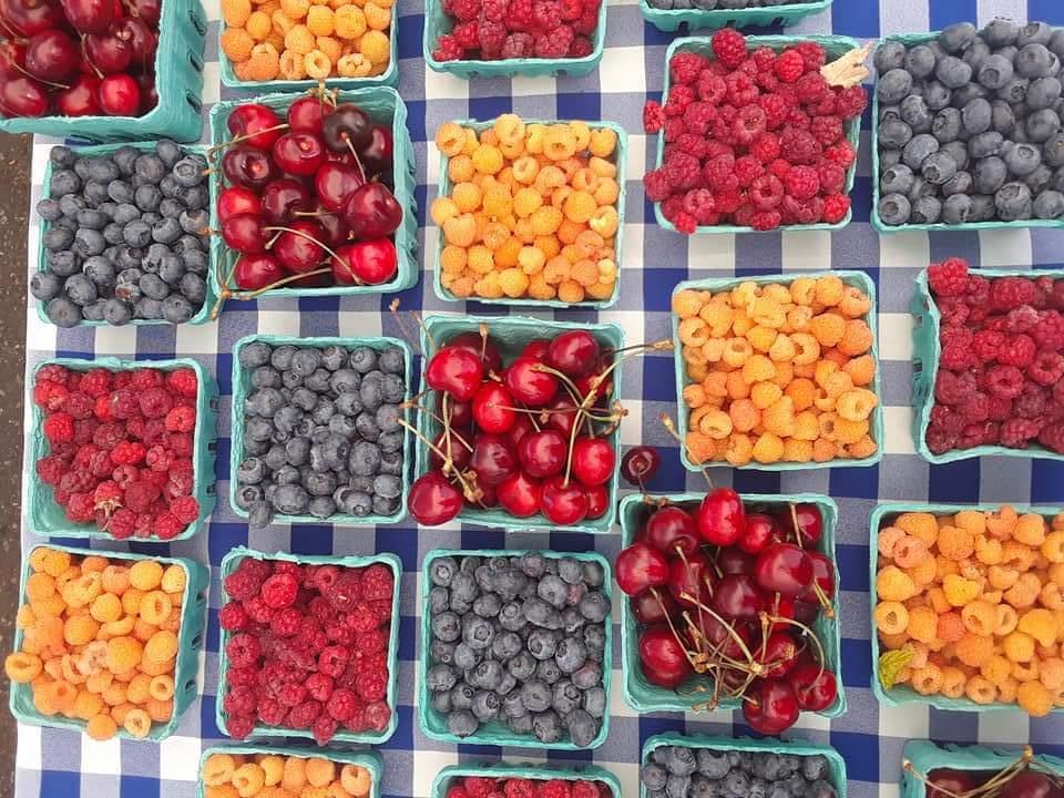 Fruit (9).jpg