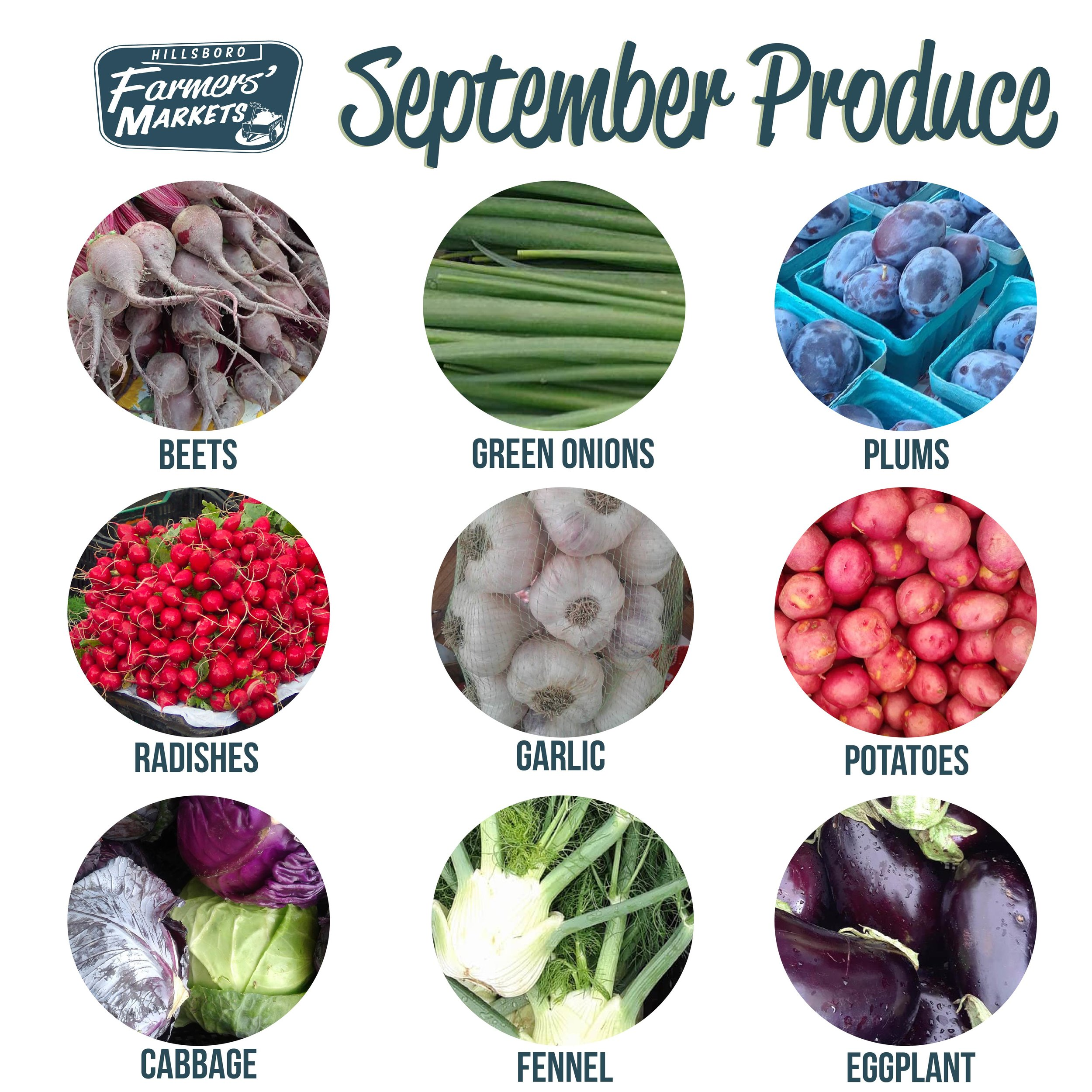 Goodbye summer, hello fall! This September you can look forward to enjoying fresh cabbage, eggplants, plums, and more! -