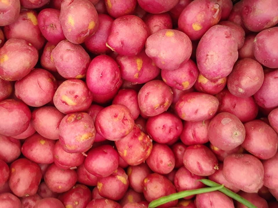 Potatoes (2).jpg