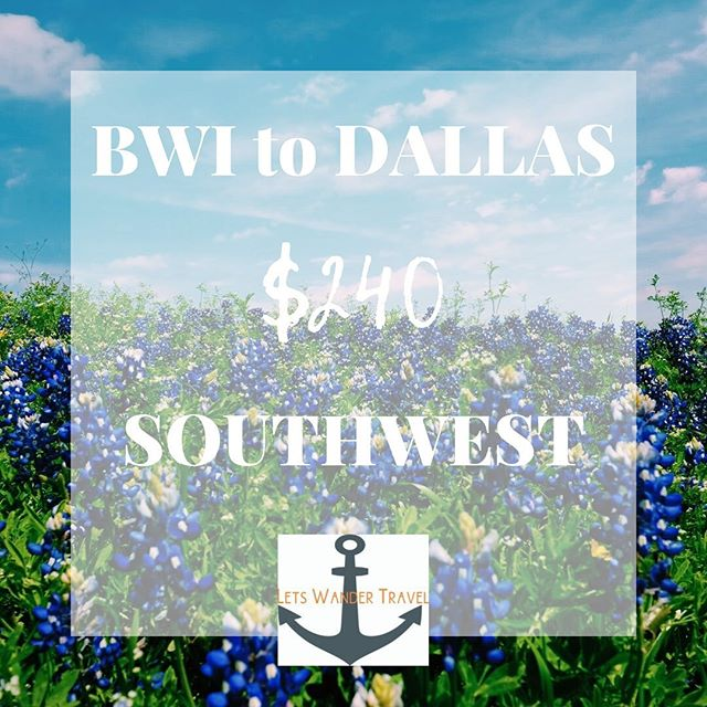 DIRECT Flights from BWI to DALLAS Example dates OCT 8-13  We can see these fares thru November  These great fares will only benefit quick decision makers! They don't last long. Tag a friend for a long weekend in Dallas to go on an adventure with. Check out @dallasfoodneed if you plan on being hungry when you go! So YUM and our favorite way to discover a location is through its local food scene.  Lets Wander Travel is always available to send you on a Mystery Trip-- see link in bio for deets.  GO HAVE AN ADVENTURE! . . . #bwi #airport #maryland #goodflights #flightdeals #letswander #letswandertravel #mysterytrips #surprisetrips #letsgoonanadventure #travelagency #domestictrips #BaltimoreWashingtonAirport #travel #bucketlist #veteranowned #USAtravel #borntotravel #traveldifferent #don'tbescared #cheapflights #exploretheUSA #dallas #texas #gocowoys