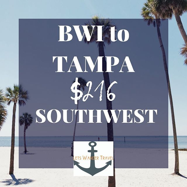 DIRECT flights from BWI to TAMPA Example dates OCT 22-26 We can see these fares OCT-Feb  These great fares will only benefit quick decision makers! They don't last long. Tag a friend for a long weekend in TAMPA to go on an adventure with. Check out @tampabayfoodtours and see what kind of trouble you can get in!! Lets Wander Travel is always available to send you on a Mystery Trip-- see link in bio for deets.  GO HAVE AN ADVENTURE! . . . #bwi #airport #maryland #goodflights #flightdeals #letswander #letswandertravel #mysterytrips #surprisetrips #letsgoonanadventure #travelagency #domestictrips #BaltimoreWashingtonAirport #travel #bucketlist #veteranowned #USAtravel #borntotravel #traveldifferent #don'tbescared #tampa #florida #cheapflights #exploretheUSA @tampabay