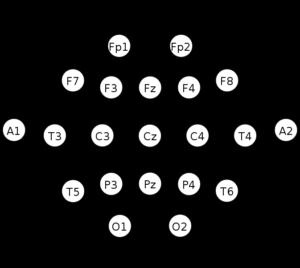 10-20-EEG-Map-300x268.png