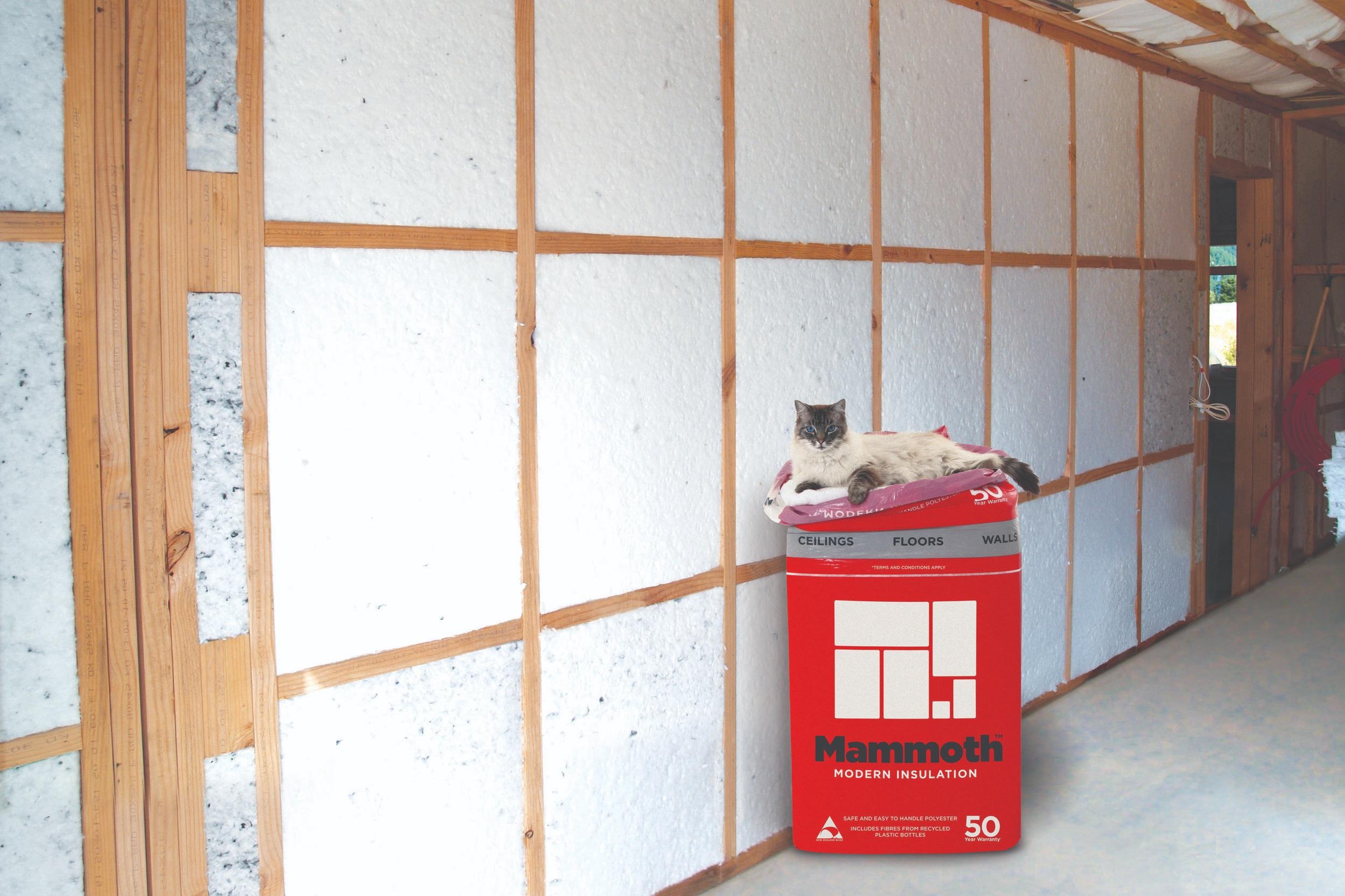 Multi+wall+installed_w.Nikolai_Right_Glebs+house_V002.jpg
