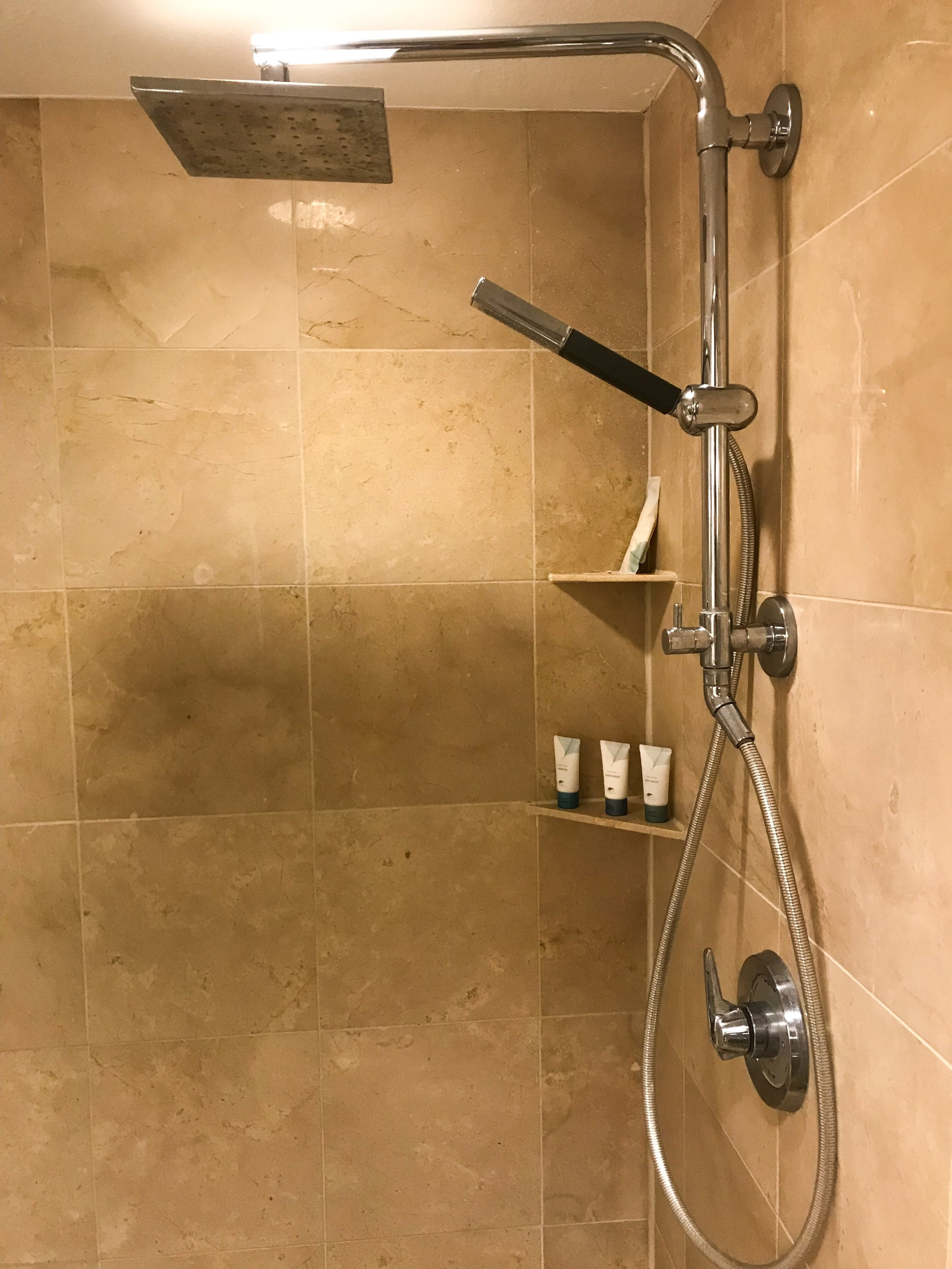 The shower head was set up like a rain shower and there was a handheld extension.
