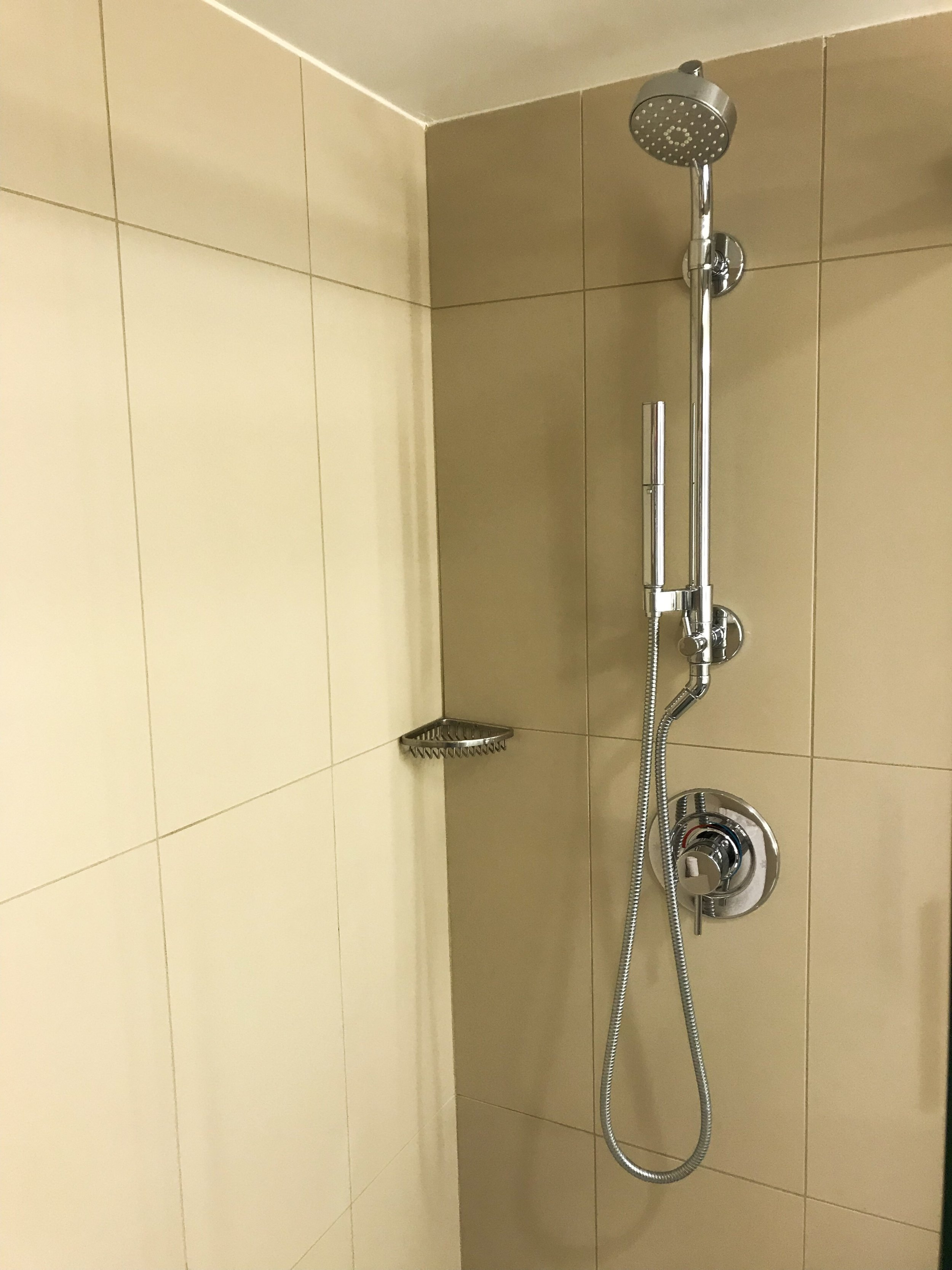 The shower also had a handheld extension.