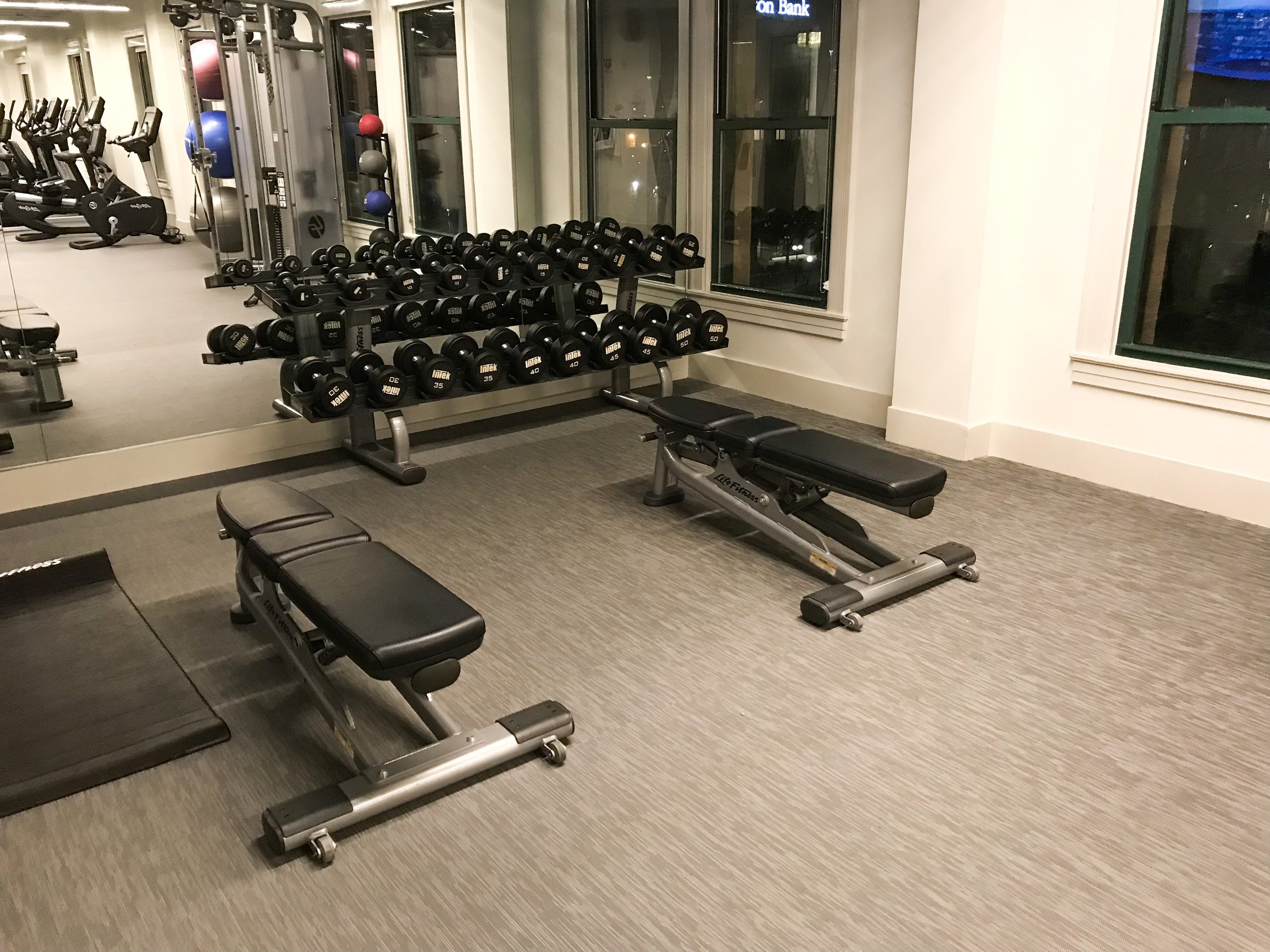 The workout room had a large selection of free weights.