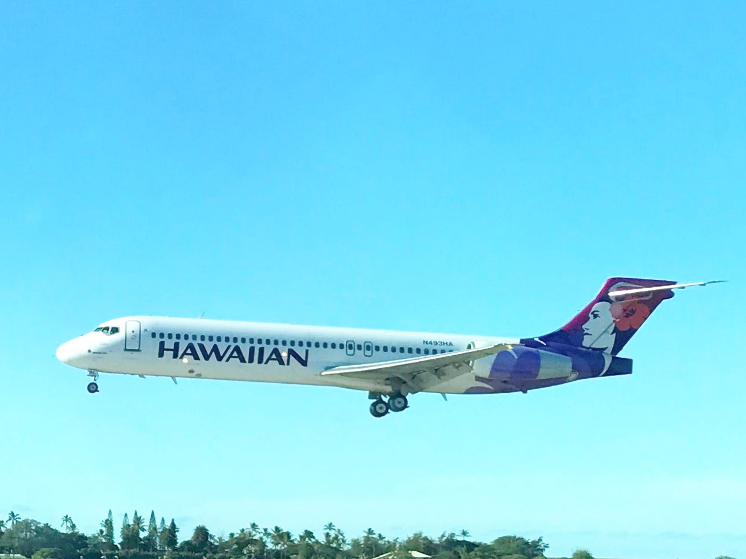 AIRCRAFT FLEET - Hawaiian operates a fleet of wide-body, narrow-body, and regional aircraft. Get detailed information about each plane, and see cabin and exterior photos.