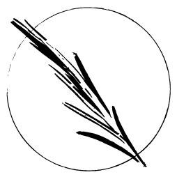 Black_LogoGraphic.jpg