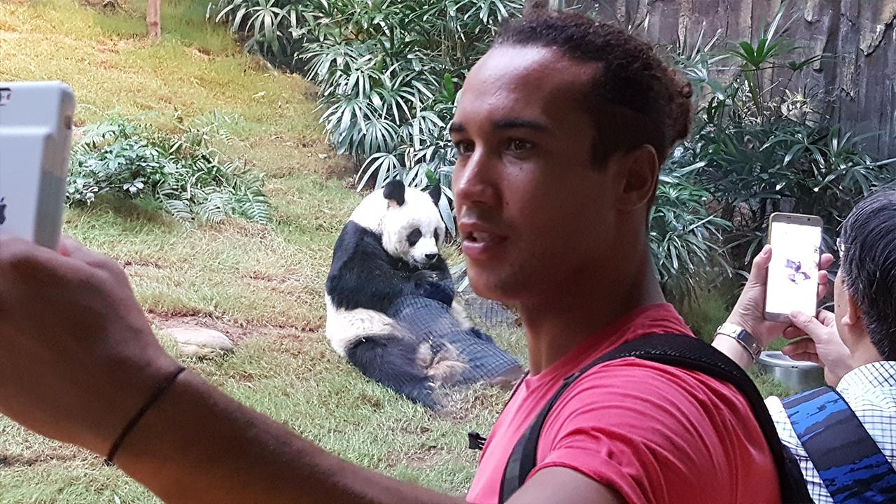 laurent panda the hk fixer le plein de sensations.jpg