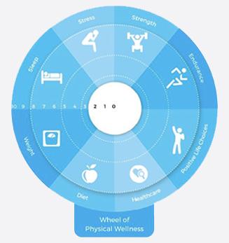 Physical_Wellness.jpg