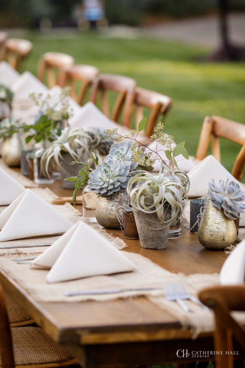 177_Catherine Hall Studios_Renee LIttle 50th_Day 1 Sonoma_preview.jpg