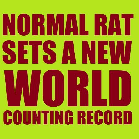 THUMB RAT.jpg