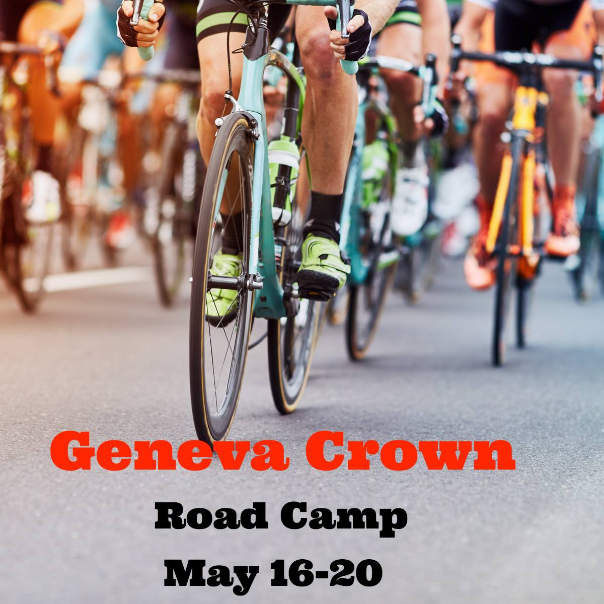 Geneva Crown.jpg